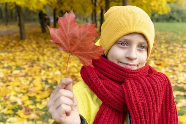 Menino coletando folhas de outono criança segurando uma folha de bordo vermelha crianças passeando no parque no outono