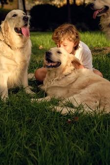 Menino com cachorros no gramado