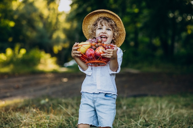 Menino com uvas na floresta em um piquenique