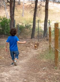 Menino corre ladeira abaixo brincando e perseguindo seu cachorro em uma estrada de terra em um parque na floresta