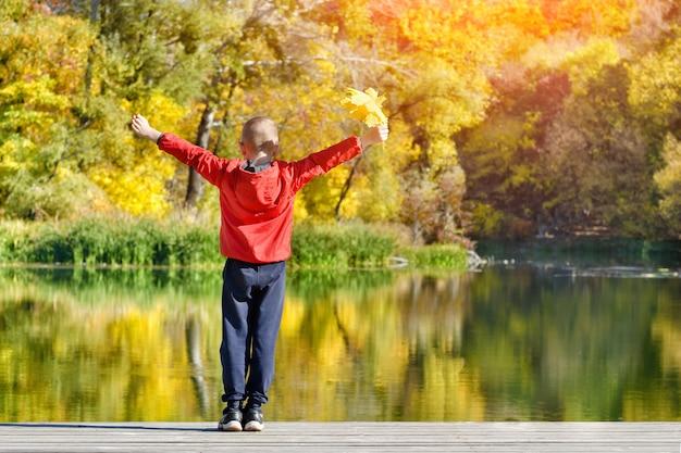 Menino de casaco vermelho em pé no banco dos réus com folhas na mão. outono, ensolarado. vista de trás