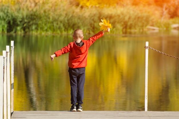 Menino de casaco vermelho em pé no cais com folhas na mão. dia ensolarado de outono. vista traseira