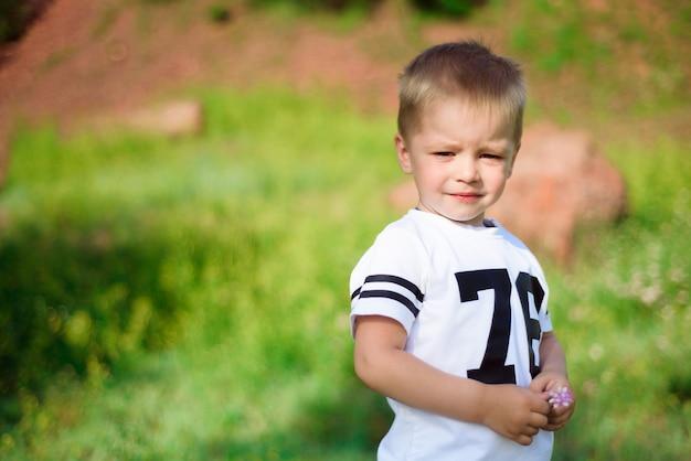 Menino de dois anos, posando na natureza no verão.
