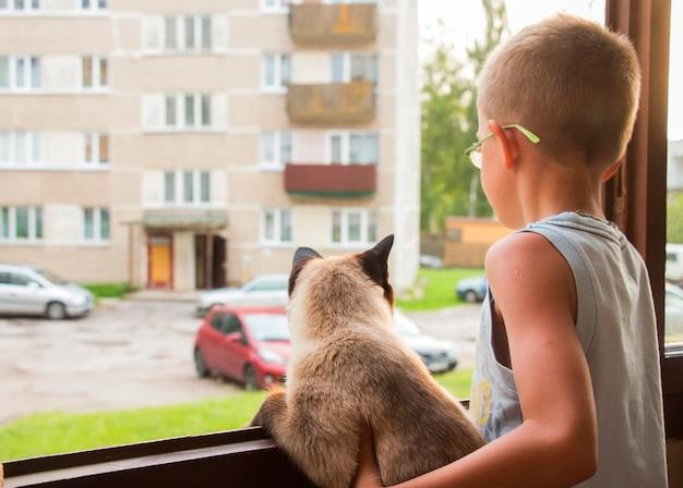 Menino e gato olhando pela janela para o quintal