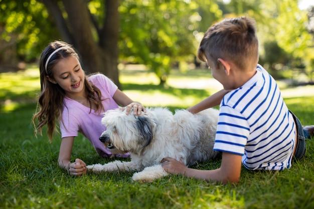 Menino e menina com cachorro no parque