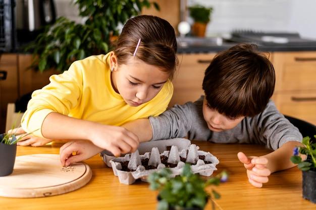 Menino e menina em casa plantando sementes