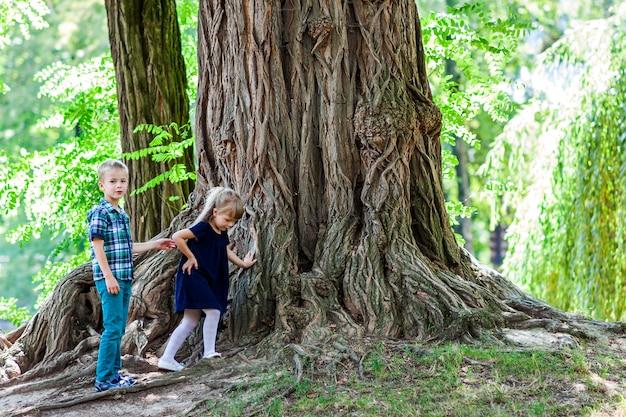 Menino e menina irmão e irmã em pé ao lado de um grande tronco de uma velha árvore