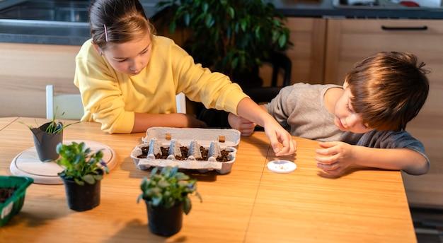 Menino e menina plantando sementes em casa