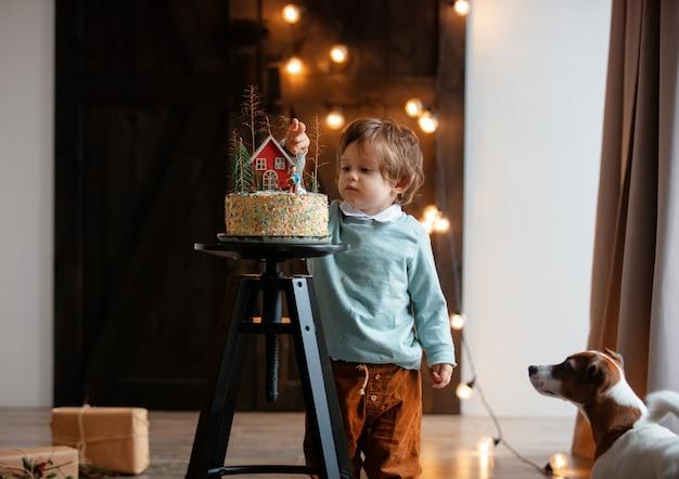 Menino e um cachorro olhando para bolo de aniversário em casa