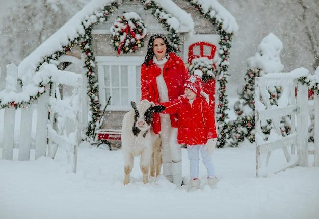 Menino e uma linda mulher posando com um pequeno touro no rancho de inverno. nevando.