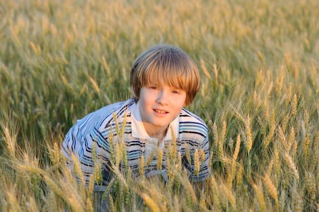 Menino, em, a, trigo, campo