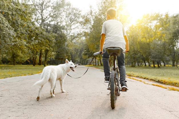 Menino em uma bicicleta com cão husky branco na estrada no parque