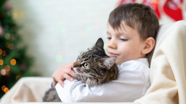 Menino em uma cadeira com um gato em casa, árvore de natal na parede