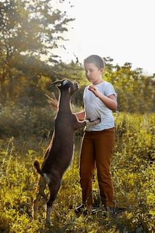 Menino engraçado da aldeia brincando com uma cabra