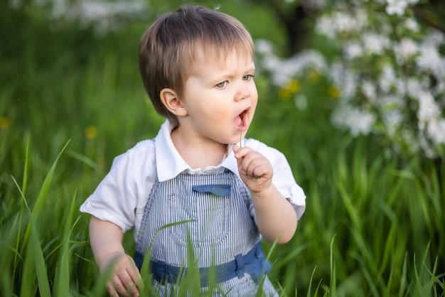 Menino engraçado em um macacão azul na moda com olhos azuis expressivos. cute sorri e come grama verde fresca em um grande jardim florido na grama alta.