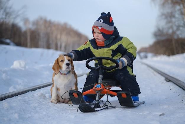 Menino europeu acariciando o cachorro sentado em um trenó no inverno enquanto caminha