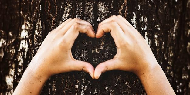 Menino fazendo um formato de coração em uma árvore