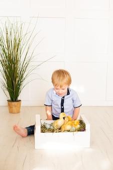 Menino fofo brincando com patos