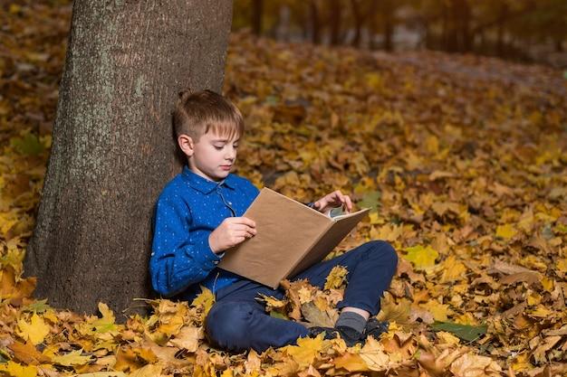 Menino lendo livros na floresta de outono sentado nas folhas de outono. amante de livros infantis.