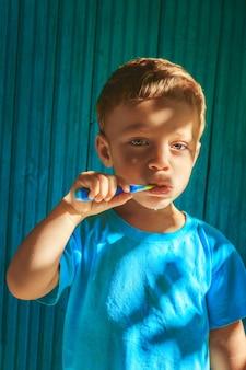 Menino, limpeza, dentes
