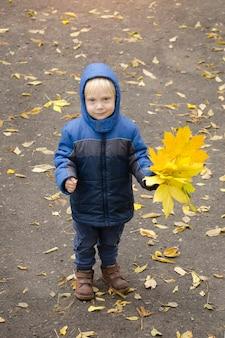 Menino loiro com folhas amarelas na mão. retrato