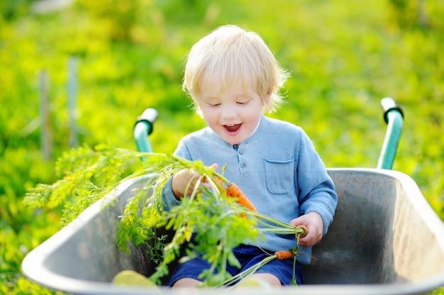 Menino loiro da criança se divertindo em um carrinho de mão no jardim interno