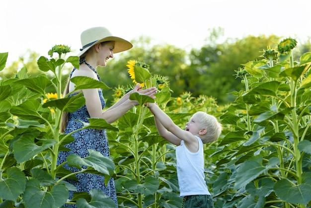 Menino loiro dá sua mãe uma flor de girassol em um campo de florescência