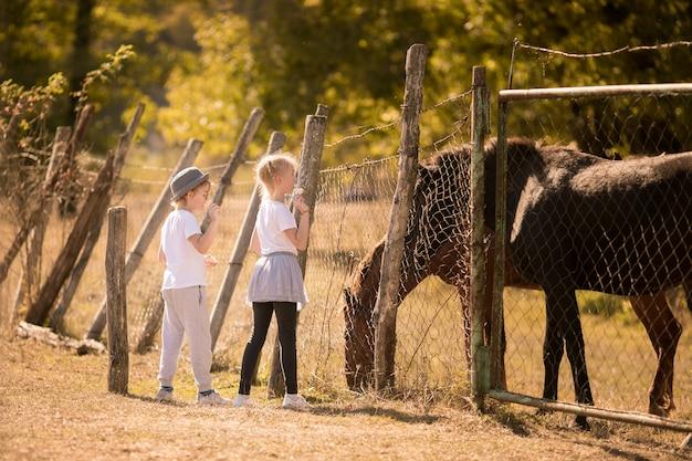 Menino loiro e menina na fazenda com cavalos selvagens