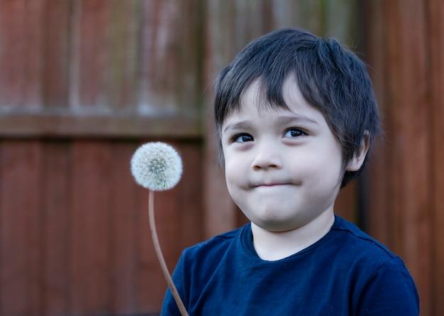 Menino menino tem coriza enquanto brincava com dente de leão