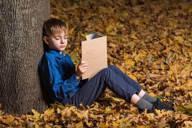 Menino na floresta de outono com o livro. a criança adormeceu na floresta com um livro na mão.