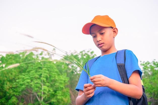 Menino na floresta verde, jogando exporing e conceito de aventura