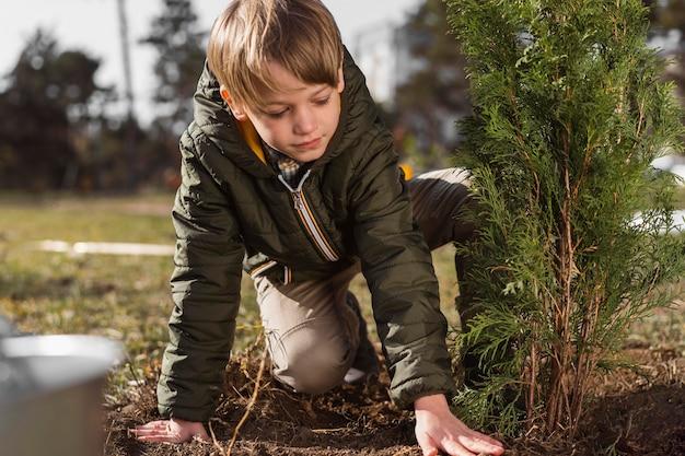 Menino plantando uma árvore ao ar livre
