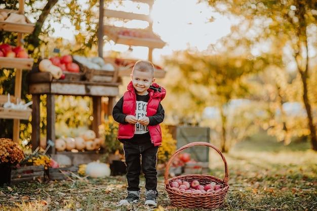 Menino posando perto de uma cesta com maçãs no mercado aberto