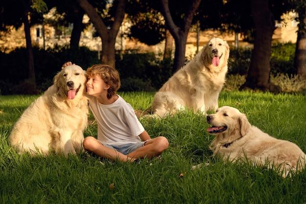 Menino sorridente acariciando cachorros no parque