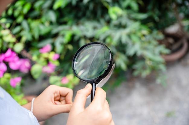 Menino usando lupa olhando e aprendendo com a folha verde na aula de biologia fora da sala de aula