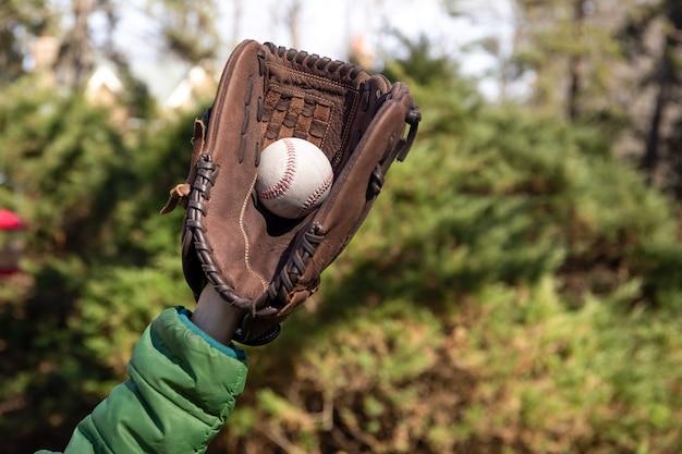 Meninos jovens, mão, pegando, bola beisebol, em, jardim