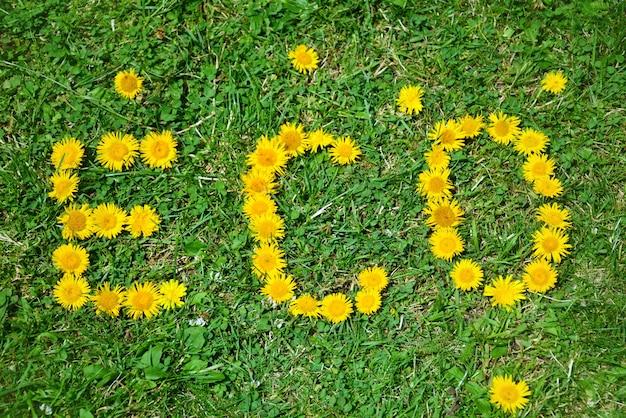 Mensagem natural com flores