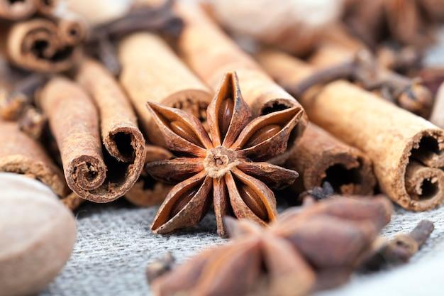 Mentir especiarias com sabor de canela anis e outros para uso na produção de pratos perfumados