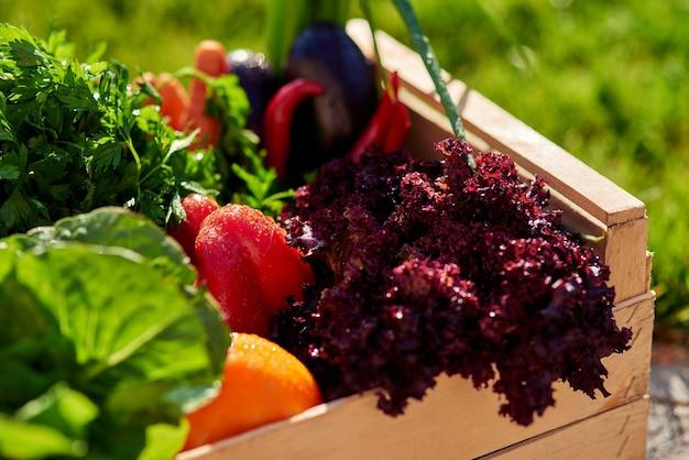 Mercearia orgânica fresca em caixa de madeira