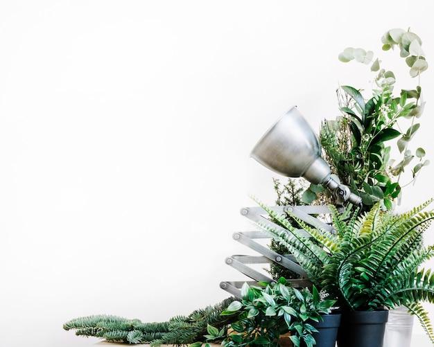 Mesa com lâmpada e plantas