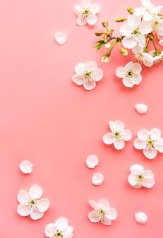Mesa de borda de primavera com lindos ramos de flores brancas. mesa rosa, florescer delicadas flores. conceito de primavera. espaço da cópia da vista superior plana leiga.