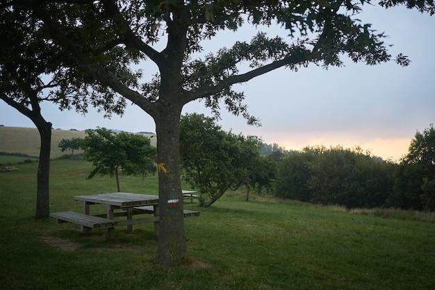 Mesa de piquenique ao pôr do sol