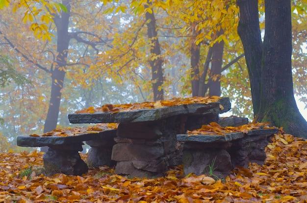 Mesa e bancos de pedra em uma floresta cercada por árvores e folhas coloridas durante o outono