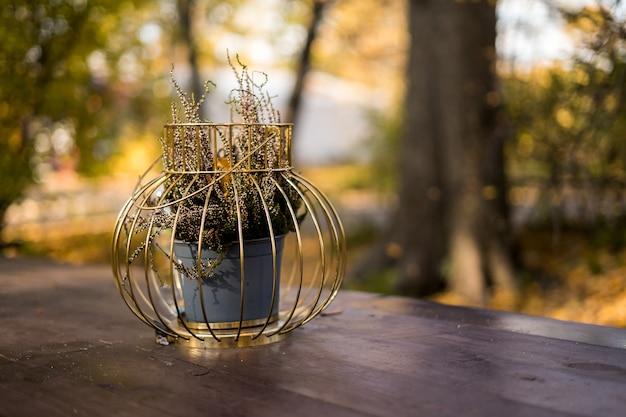 Mesa servida para a celebração do halloween no jardim. foto de alta qualidade