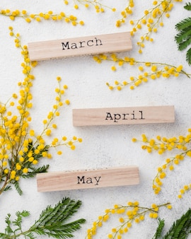 Meses de primavera com galhos de flores