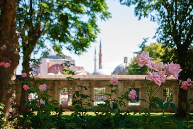 Mesquita de hagia sophia à distância.