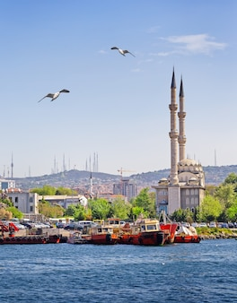 Mesquita na costa de istambul