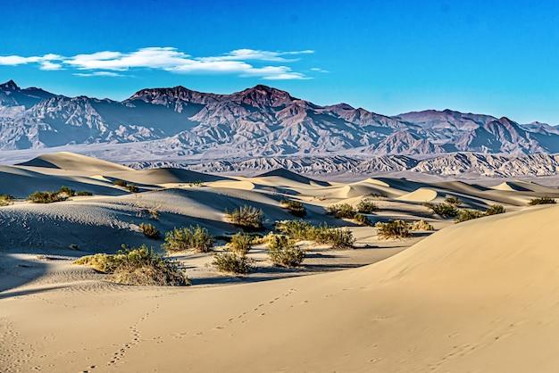 Mesquite sand dunes no parque nacional do vale da morte na califórnia, eua