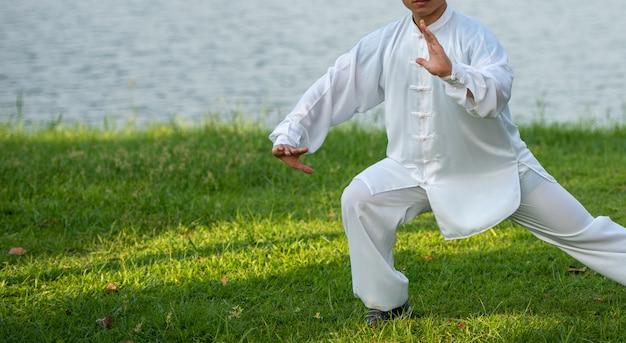 Mestre de tai chi chuan mãos treino de postura no parque