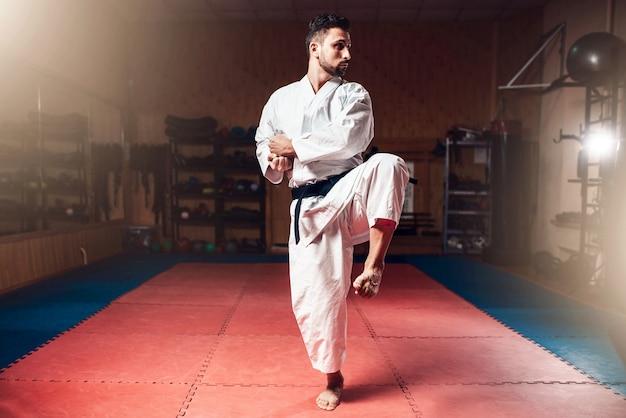 Mestre em artes marciais, faixa preta, caratê